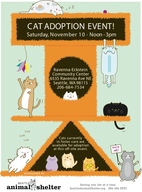 recc hosting seattle animal shelter cat adoption event this saturday
