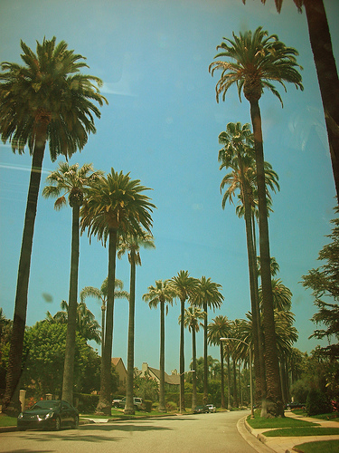 Hollywood by byDavvi (via Flickr)